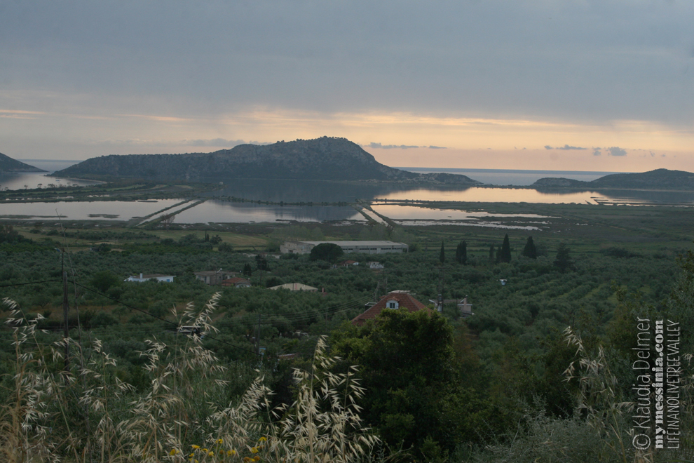 View on a part of the olive tree valley and YALOVA lagoon