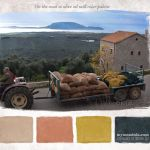Christmas in Messinia color palettes