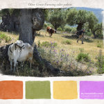 Animal farming within the olive tree valley color palette